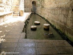 Byzantine-Pool-of-Siloam,-tb051905955-lugaresbiblicos