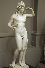 Hermaphroditus_lady_lever