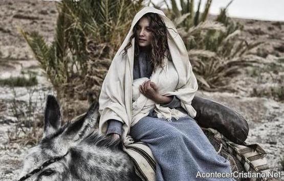 maria-en-burro